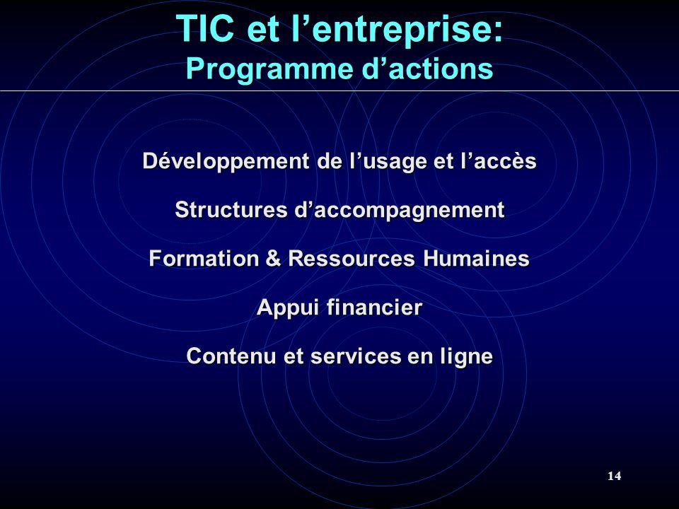 14 TIC et lentreprise: Programme dactions Développement de lusage et laccès Structures daccompagnement Formation & Ressources Humaines Appui financier Contenu et services en ligne