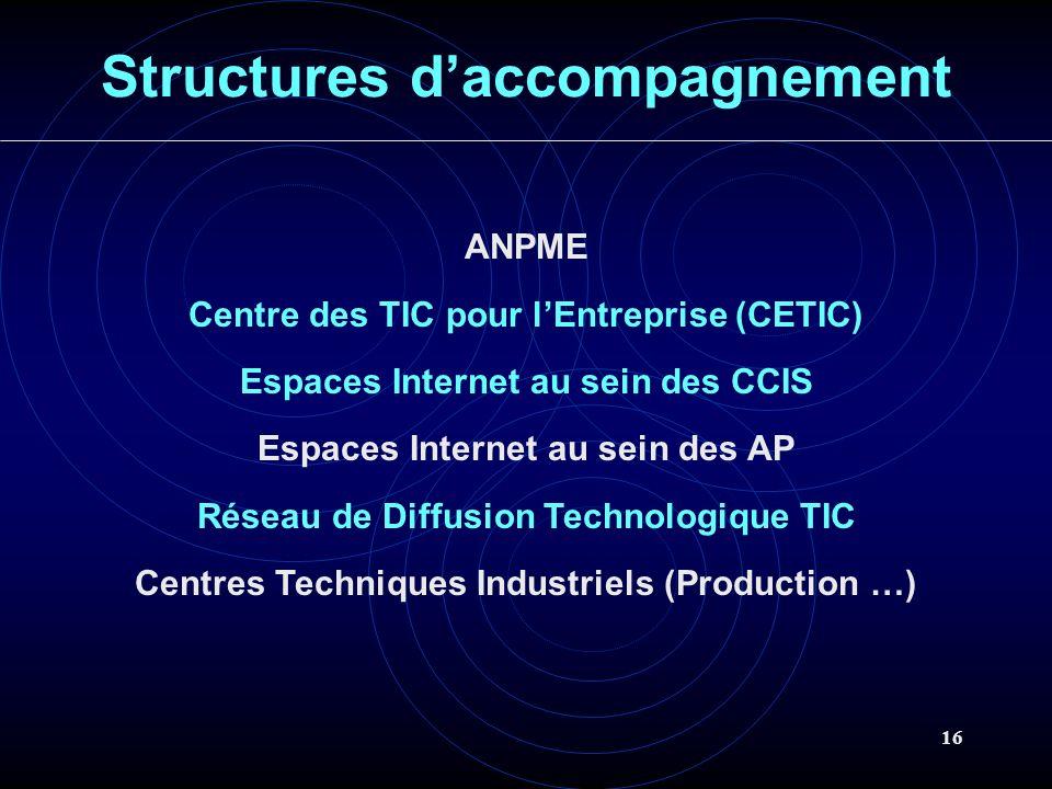 16 Structures daccompagnement ANPME Centre des TIC pour lEntreprise (CETIC) Espaces Internet au sein des CCIS Espaces Internet au sein des AP Réseau de Diffusion Technologique TIC Centres Techniques Industriels (Production …)