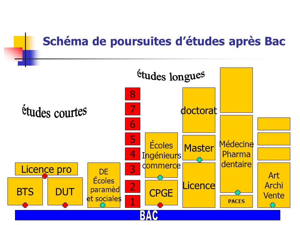 Schéma de poursuites détudes après Bac 1 2 3 4 5 6 7 8 DUTBTS DE Écoles paramèd et sociales Écoles Ingénieurs commerce Licence doctorat Master CPGE PA
