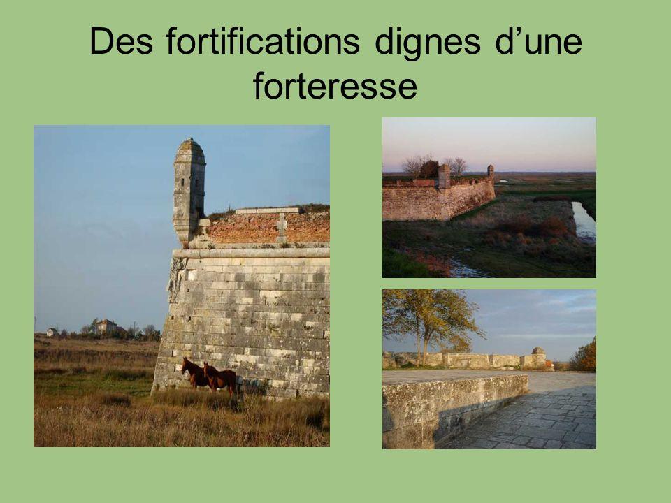 Des fortifications dignes dune forteresse