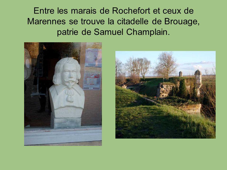 Entre les marais de Rochefort et ceux de Marennes se trouve la citadelle de Brouage, patrie de Samuel Champlain.