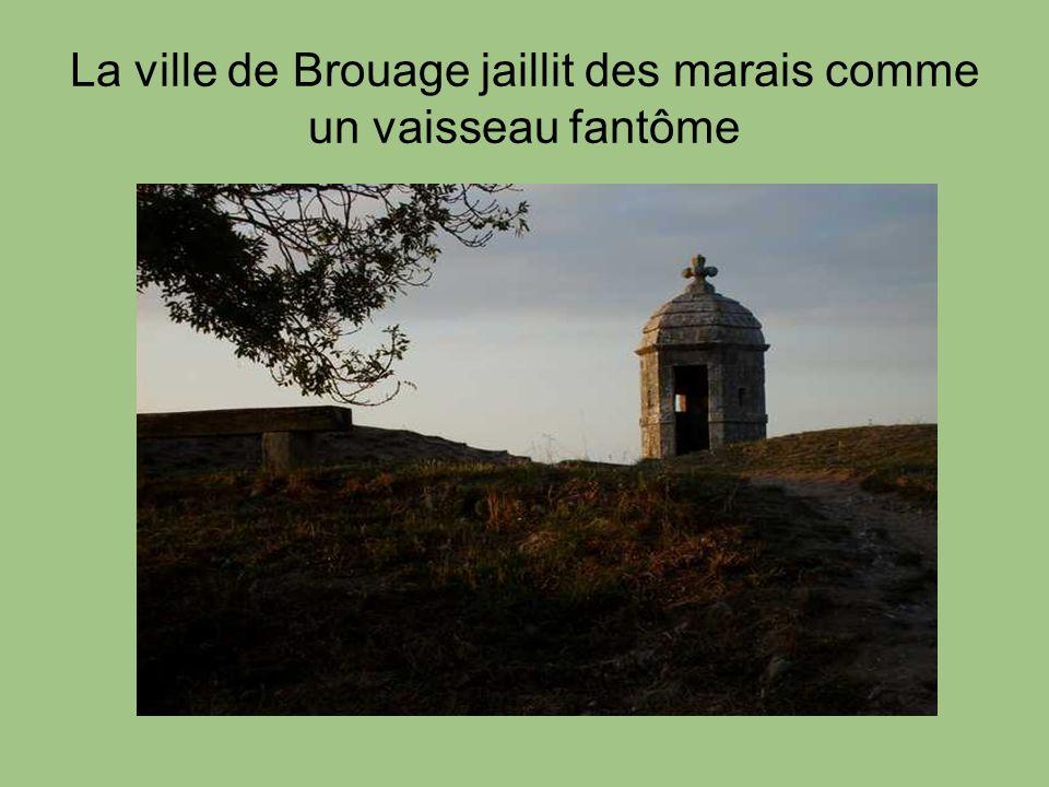 Brouage et lor blanc En 1555, Brouage devient une importante place de négoce internationale.