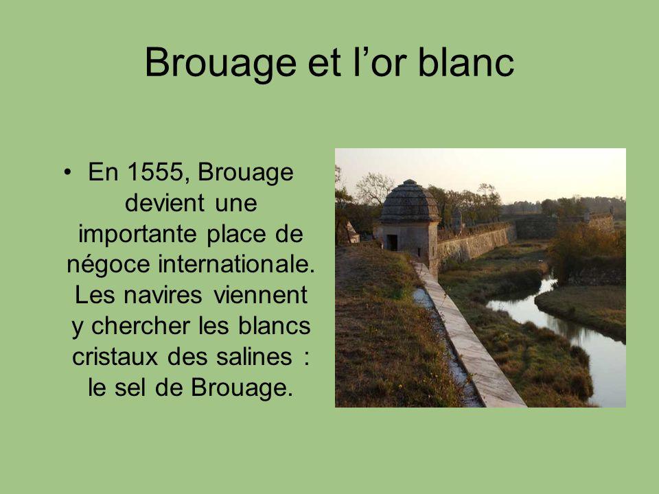 Brouage et lor blanc En 1555, Brouage devient une importante place de négoce internationale. Les navires viennent y chercher les blancs cristaux des s