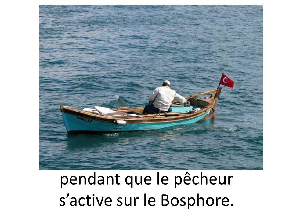 pendant que le pêcheur sactive sur le Bosphore.