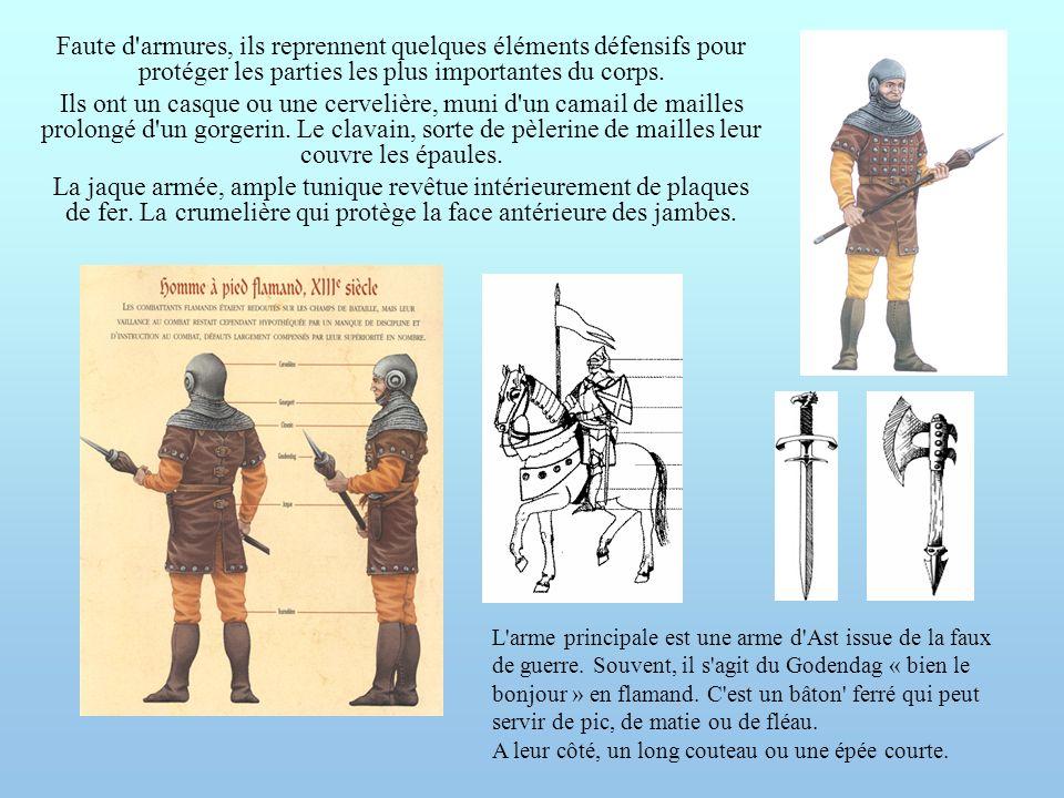 Faute d'armures, ils reprennent quelques éléments défensifs pour protéger les parties les plus importantes du corps. Ils ont un casque ou une cerveliè