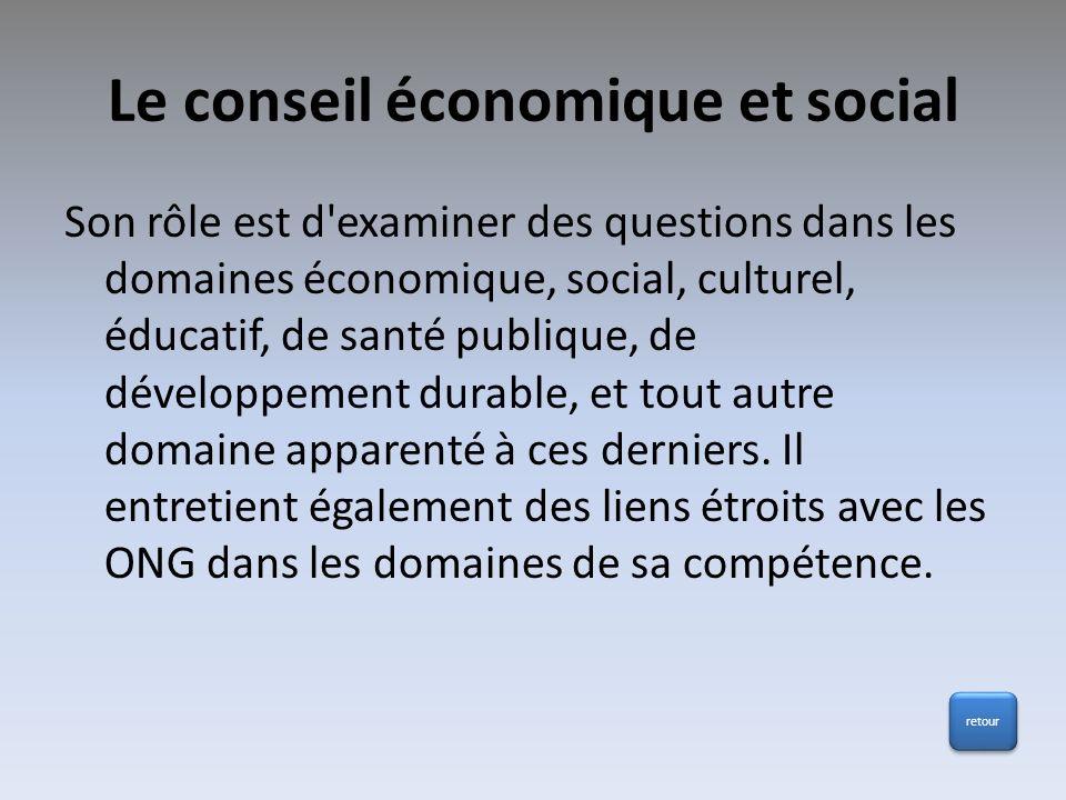 Le conseil économique et social Son rôle est d'examiner des questions dans les domaines économique, social, culturel, éducatif, de santé publique, de