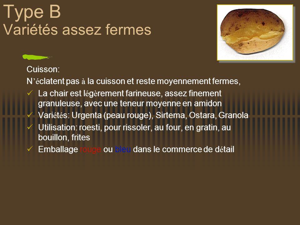 Type B Variétés assez fermes Cuisson: N é clatent pas à la cuisson et reste moyennement fermes, La chair est l é g è rement farineuse, assez finement