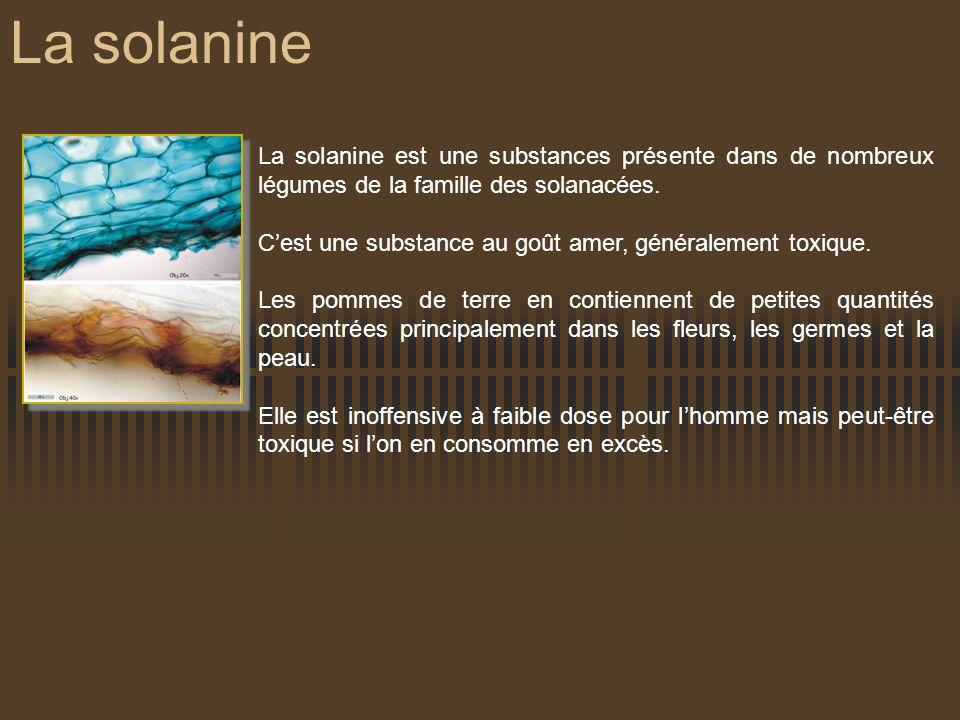 La solanine La solanine est une substances présente dans de nombreux légumes de la famille des solanacées. Cest une substance au goût amer, généraleme