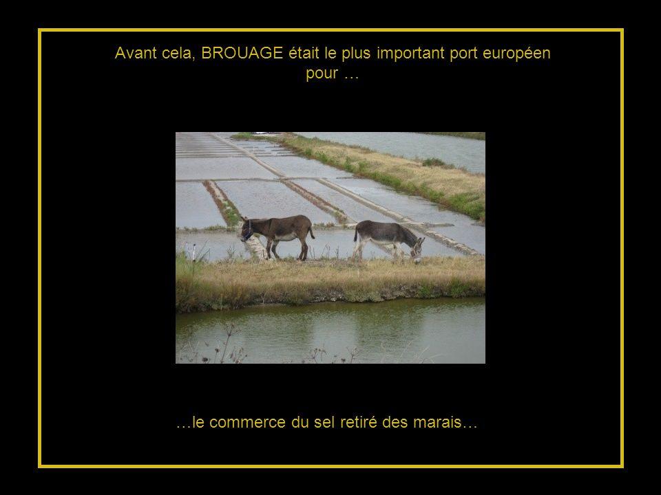 …le commerce du sel retiré des marais… Avant cela, BROUAGE était le plus important port européen pour …