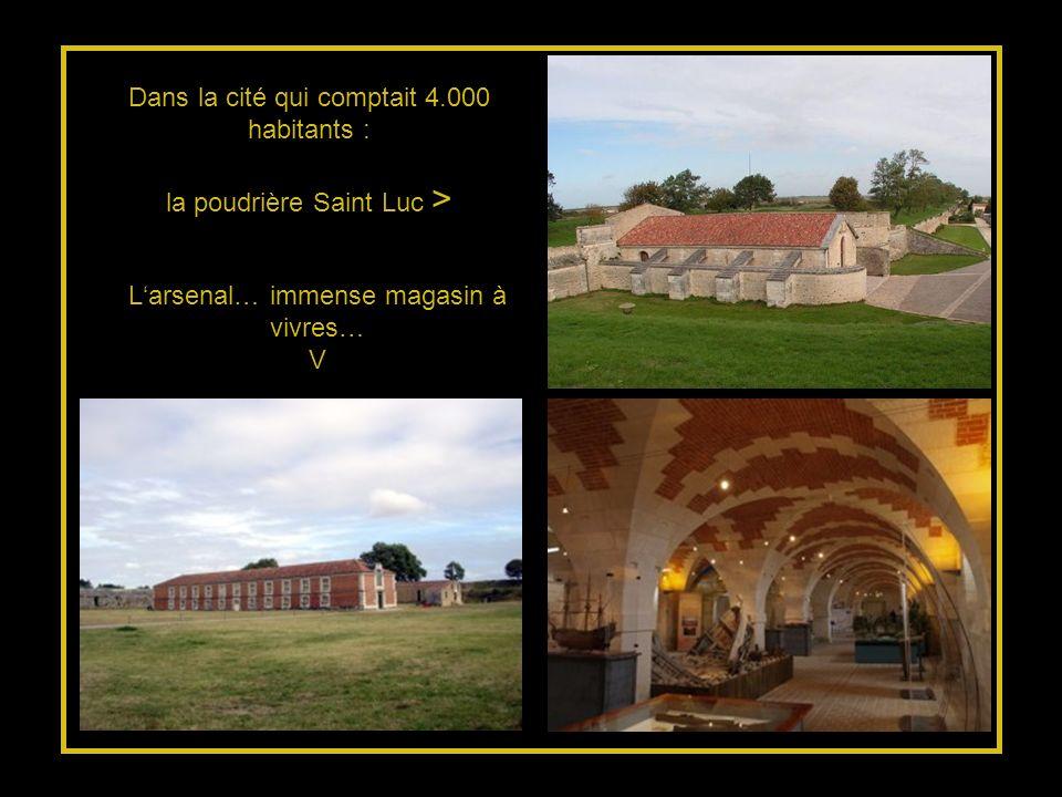 « Souvenance » Le vitrail reprend les notes de CHAMPLAIN sur sa découverte du territoire quoccupe aujourdhui lOntario.