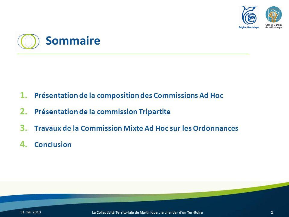 Sommaire 1. Présentation de la composition des Commissions Ad Hoc 2.