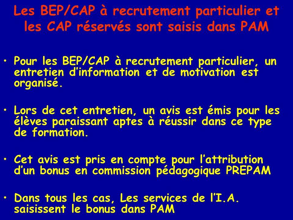 Les BEP/CAP à recrutement particulier et les CAP réservés sont saisis dans PAM Pour les BEP/CAP à recrutement particulier, un entretien dinformation et de motivation est organisé.