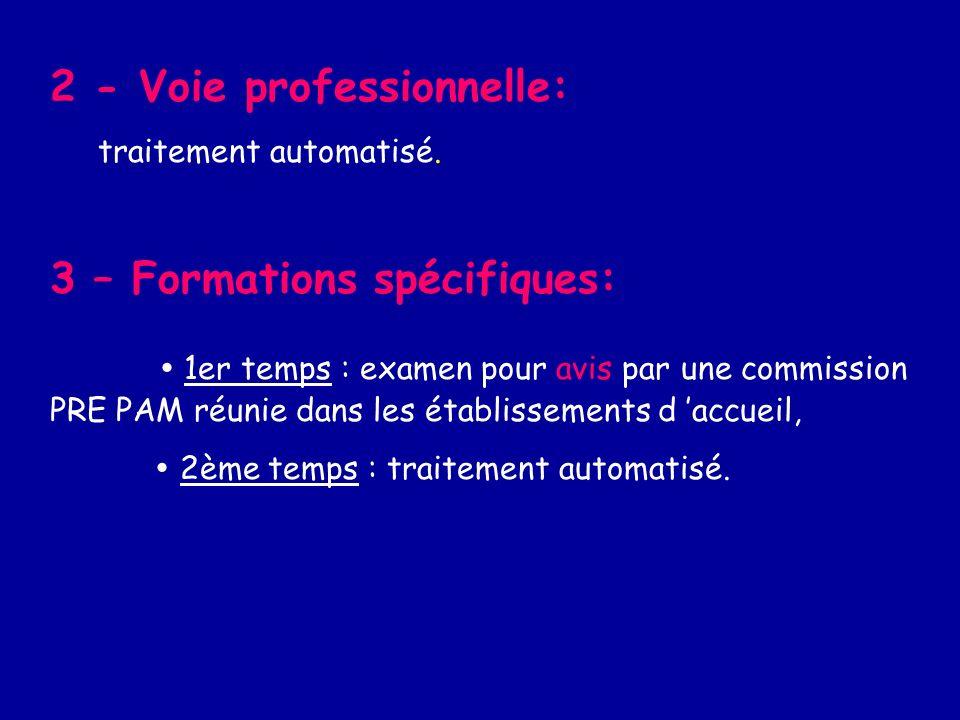 2 - Voie professionnelle: traitement automatisé.