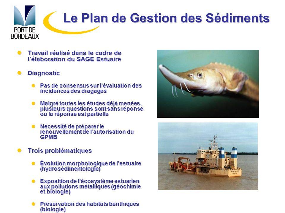Travail réalisé dans le cadre de lélaboration du SAGE Estuaire Travail réalisé dans le cadre de lélaboration du SAGE Estuaire Diagnostic Diagnostic Pa