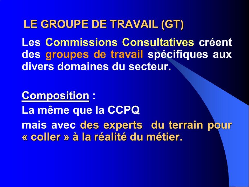 LE GROUPE DE TRAVAIL (GT) Les Commissions Consultatives créent des groupes de travail spécifiques aux divers domaines du secteur.