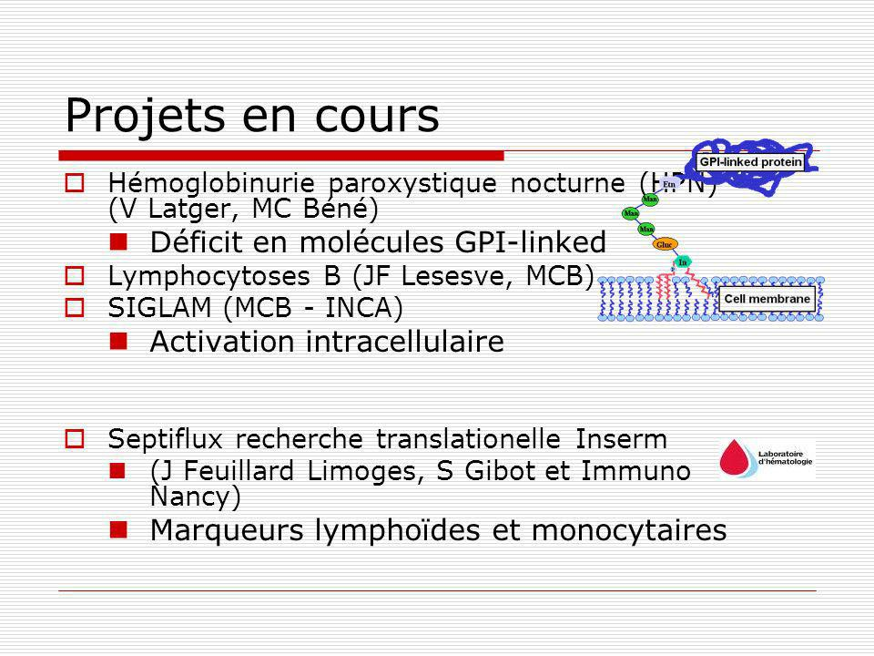 Projets en cours Hémoglobinurie paroxystique nocturne (HPN) (V Latger, MC Béné) Déficit en molécules GPI-linked Lymphocytoses B (JF Lesesve, MCB) SIGLAM (MCB - INCA) Activation intracellulaire Septiflux recherche translationelle Inserm (J Feuillard Limoges, S Gibot et Immuno Nancy) Marqueurs lymphoïdes et monocytaires
