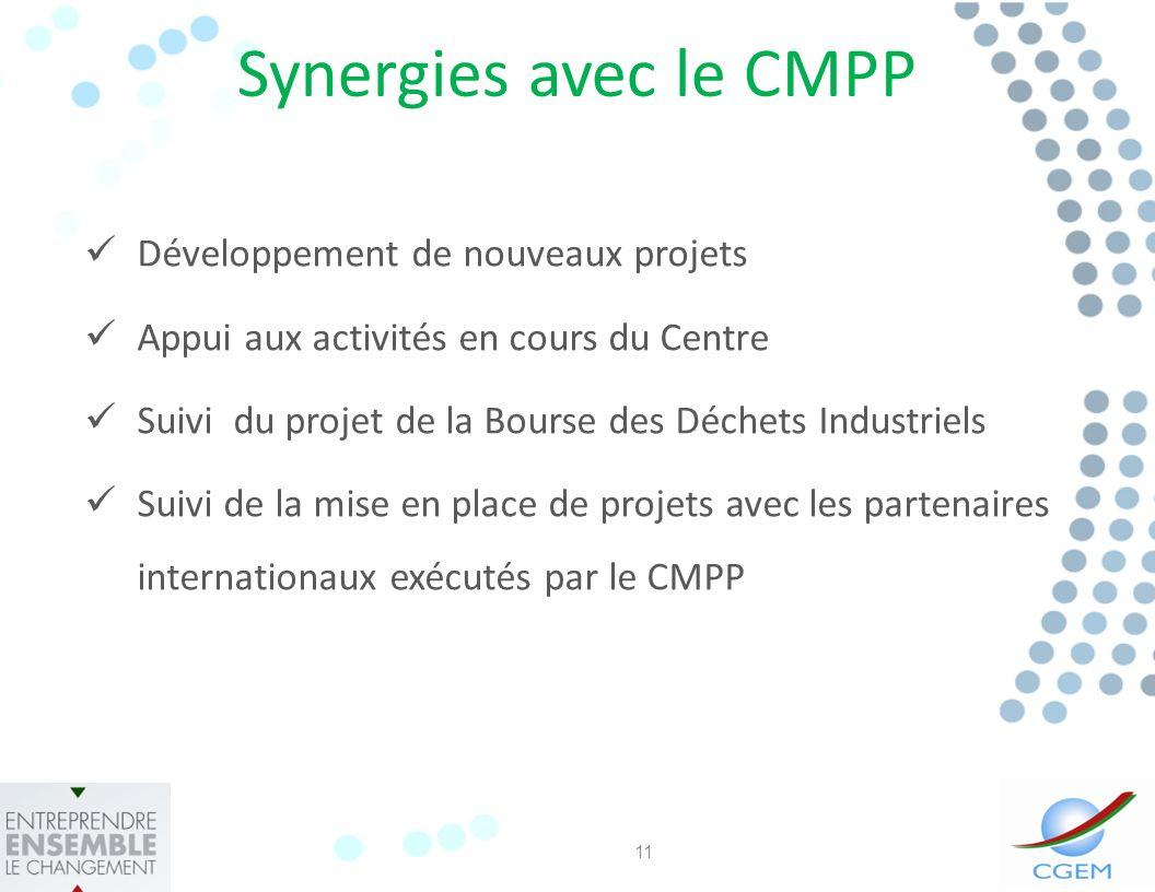 Synergies avec le CMPP Développement de nouveaux projets Appui aux activités en cours du Centre Suivi du projet de la Bourse des Déchets Industriels Suivi de la mise en place de projets avec les partenaires internationaux exécutés par le CMPP 11