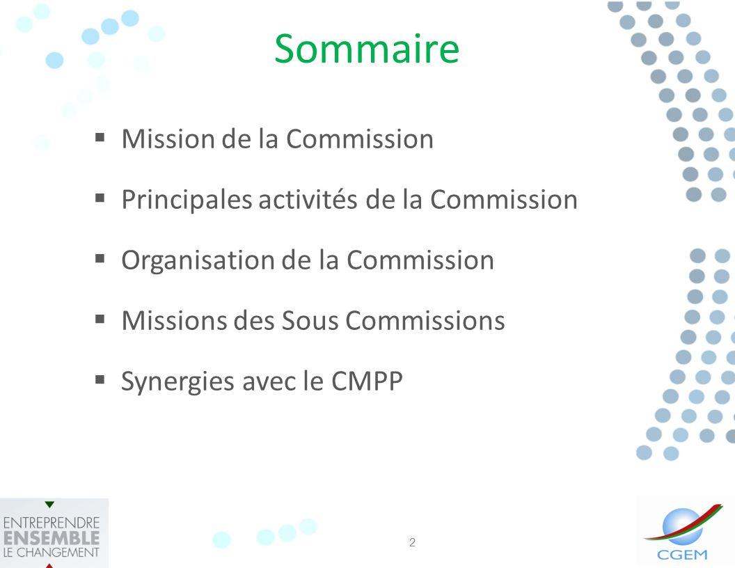 Sommaire Mission de la Commission Principales activités de la Commission Organisation de la Commission Missions des Sous Commissions Synergies avec le CMPP 2