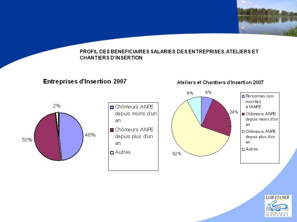 PROFIL DES BENEFICIAIRES SALARIES DES ENTREPRISES, ATELIERS ET CHANTIERS D'INSERTION