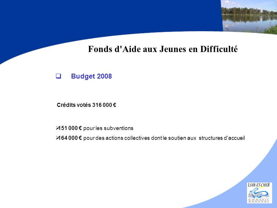 Fonds d'Aide aux Jeunes en Difficulté Budget 2008 Crédits votés 316 000 151 000 pour les subventions 164 000 pour des actions collectives dont le sout