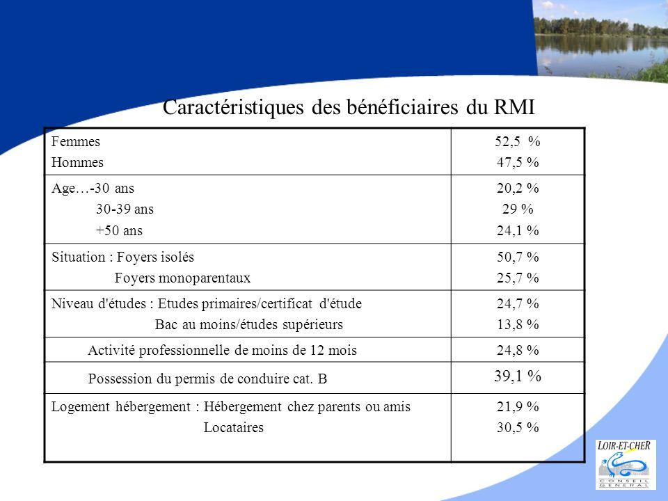 Implantation géographique mars 2008 = 5275 bénéficiaires Répartis dans les 4 Commissions Locales d Insertion