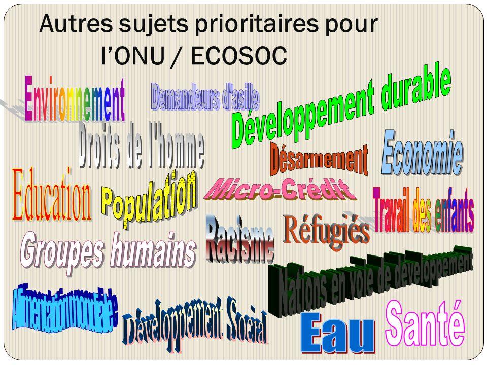 Autres sujets prioritaires pour lONU / ECOSOC