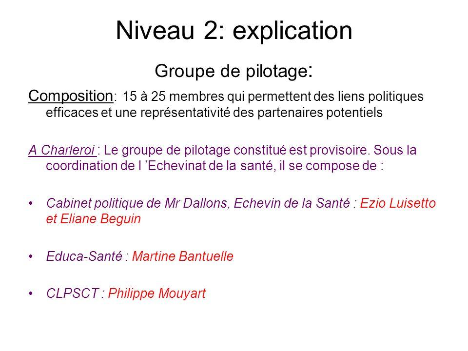 Niveau 2: explication Groupe de pilotage : Composition : 15 à 25 membres qui permettent des liens politiques efficaces et une représentativité des par