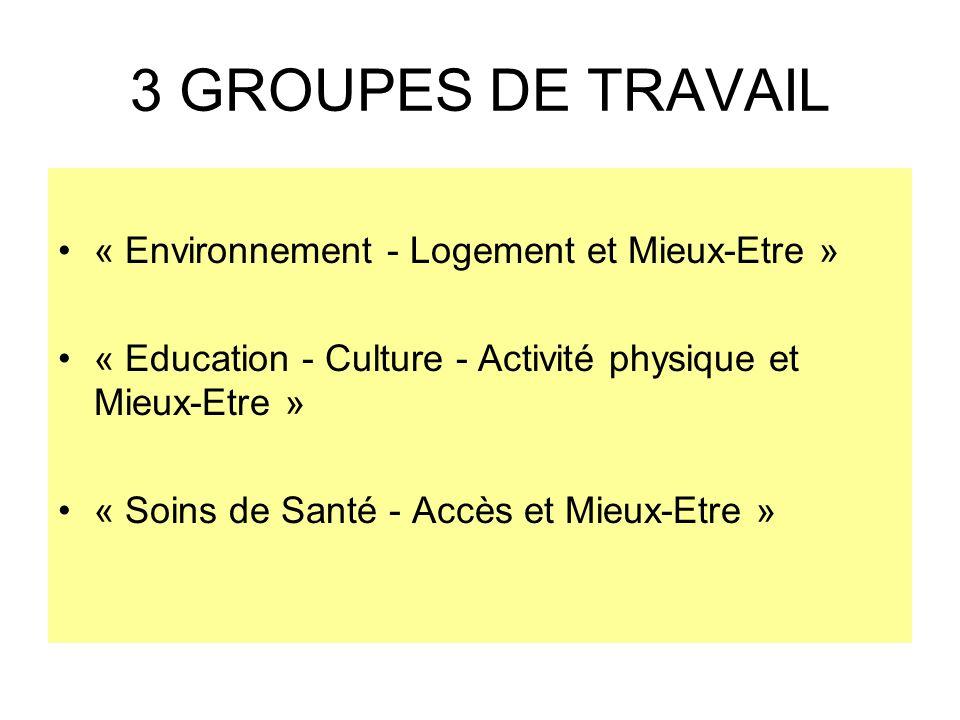 3 GROUPES DE TRAVAIL « Environnement - Logement et Mieux-Etre » « Education - Culture - Activité physique et Mieux-Etre » « Soins de Santé - Accès et