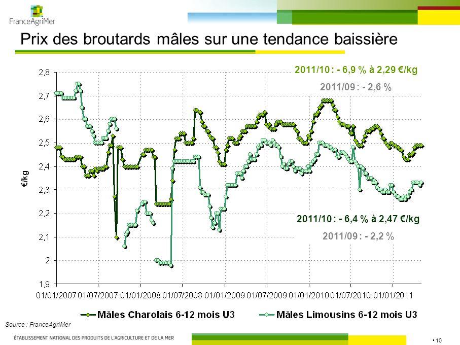 10 Prix des broutards mâles sur une tendance baissière Source : FranceAgriMer 2011/10 : - 6,4 % à 2,47 /kg 2011/09 : - 2,2 % 2011/10 : - 6,9 % à 2,29