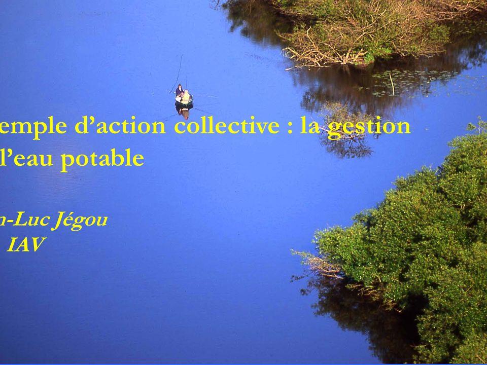 Exemple daction collective : la gestion de leau potable Jean-Luc Jégou Dir. IAV