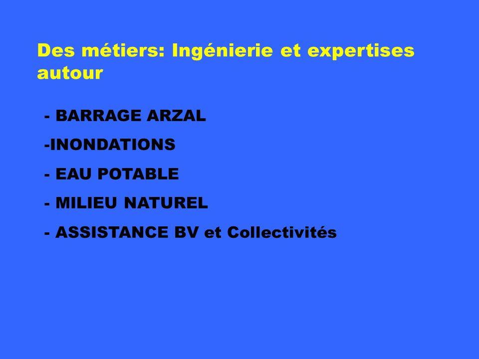 Fondation - BARRAGE ARZAL -INONDATIONS - EAU POTABLE - MILIEU NATUREL - ASSISTANCE BV et Collectivités Des métiers: Ingénierie et expertises autour