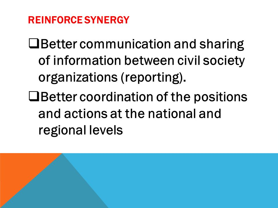 REINFORCE SYNERGY Better communication and sharing of information between civil society organizations (reporting). Better coordination of the position