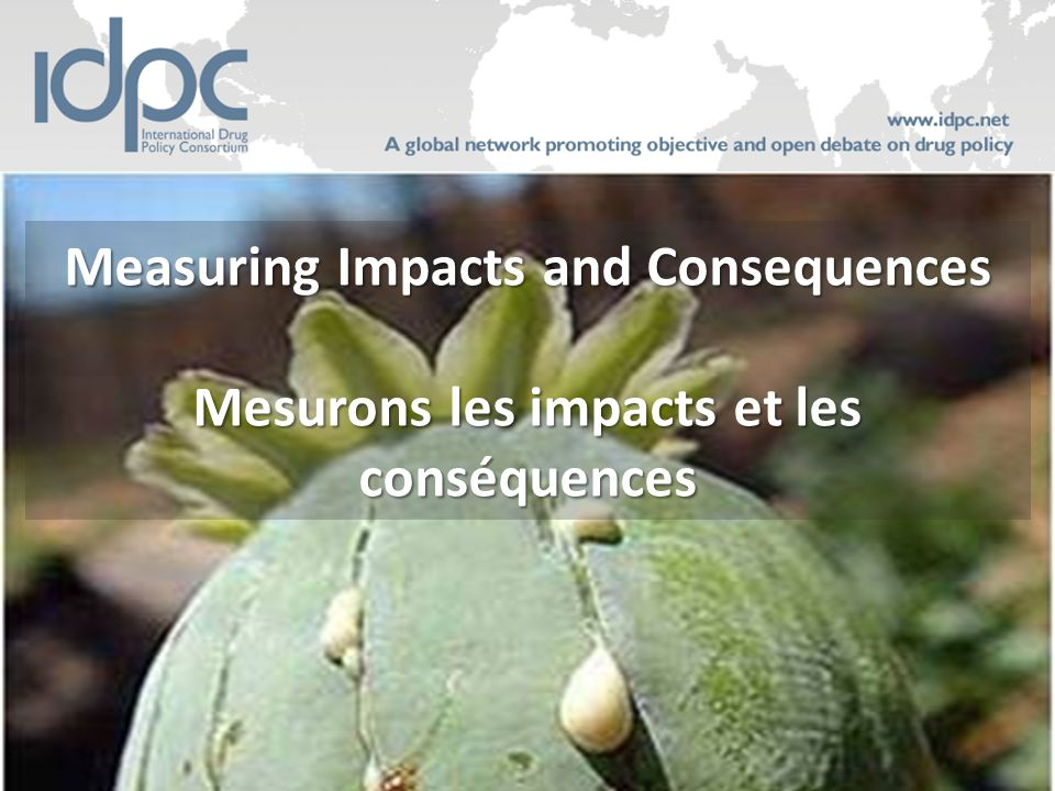 Measuring Impacts and Consequences Mesurons les impacts et les conséquences