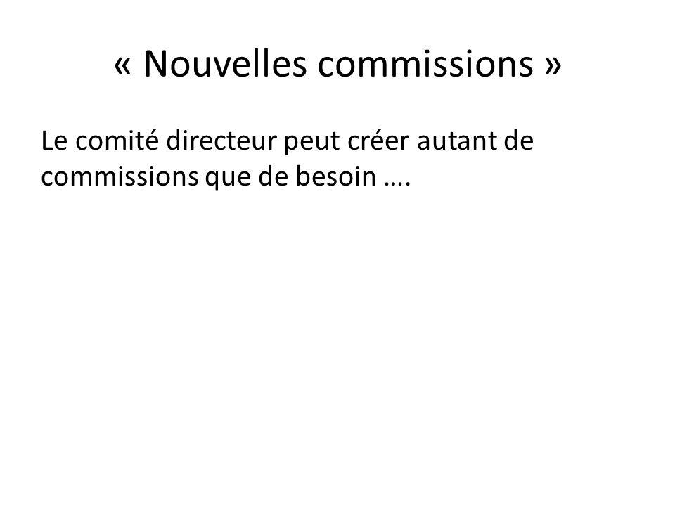 « Nouvelles commissions » Le comité directeur peut créer autant de commissions que de besoin ….