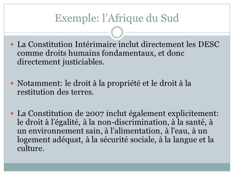 Exemple: lAfrique du Sud La Constitution Intérimaire inclut directement les DESC comme droits humains fondamentaux, et donc directement justiciables.
