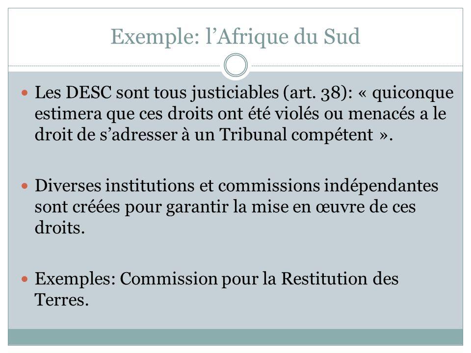 Exemple: lAfrique du Sud Les DESC sont tous justiciables (art. 38): « quiconque estimera que ces droits ont été violés ou menacés a le droit de sadres