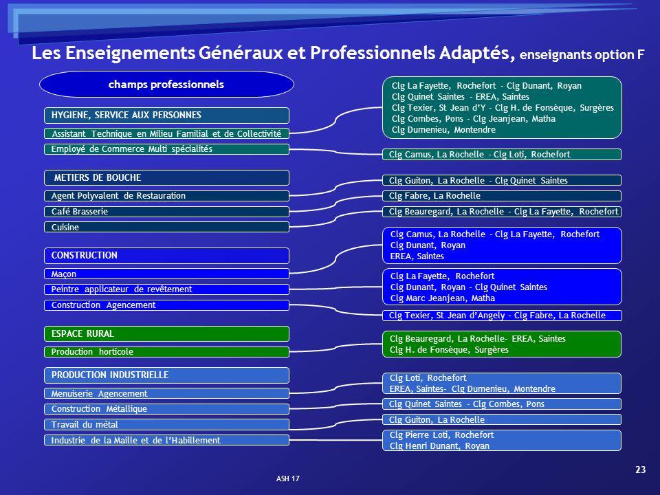 ASH 17 23 Les Enseignements Généraux et Professionnels Adaptés, enseignants option F HYGIENE, SERVICE AUX PERSONNES Assistant Technique en Milieu Fami