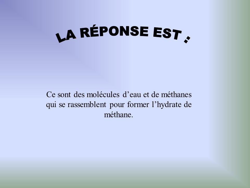 Ce sont des molécules deau et de méthanes qui se rassemblent pour former lhydrate de méthane.
