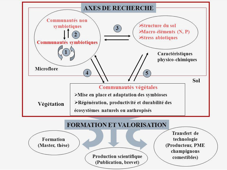 Axe 1: Analyse de la structure et de la diversité fonctionnelle des communautés de symbiotes microbiens Axe 2: Interactions entre flore non symbiotique et flore symbiotique du sol Axe 3: Interactions entre les caractéristiques physico-chimiques du sol et les communautés de symbiotes fongiques et bactériens Axe 4: Interactions entre la couverture végétale et la structure et la diversité fonctionnelle des communautés mycorhiziennes et rhizobiennes des sols Axe 5: Impact de la diversité des symbiotes fongiques et bactériens sur ladaptation des plantes aux stress abiotiques, la productivité et la durabilité des écosystèmes naturels ou anthropisés AXES DE RECHERCHE