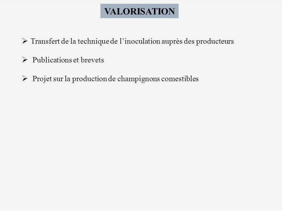 VALORISATION Transfert de la technique de linoculation auprès des producteurs Publications et brevets Projet sur la production de champignons comestib