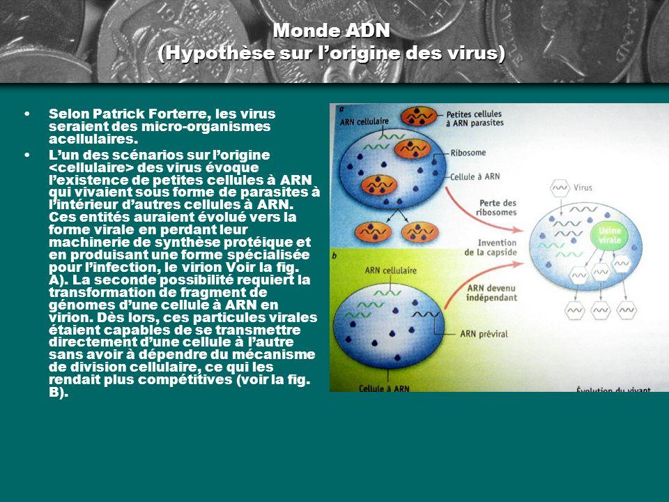 Monde ADN (Hypothèse sur lorigine des virus) Selon Patrick Forterre, les virus seraient des micro-organismes acellulaires. Lun des scénarios sur lorig