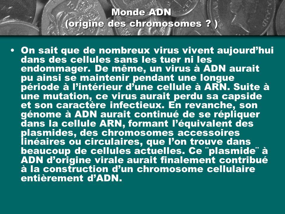 Monde ADN (origine des chromosomes ? ) On sait que de nombreux virus vivent aujourdhui dans des cellules sans les tuer ni les endommager. De même, un