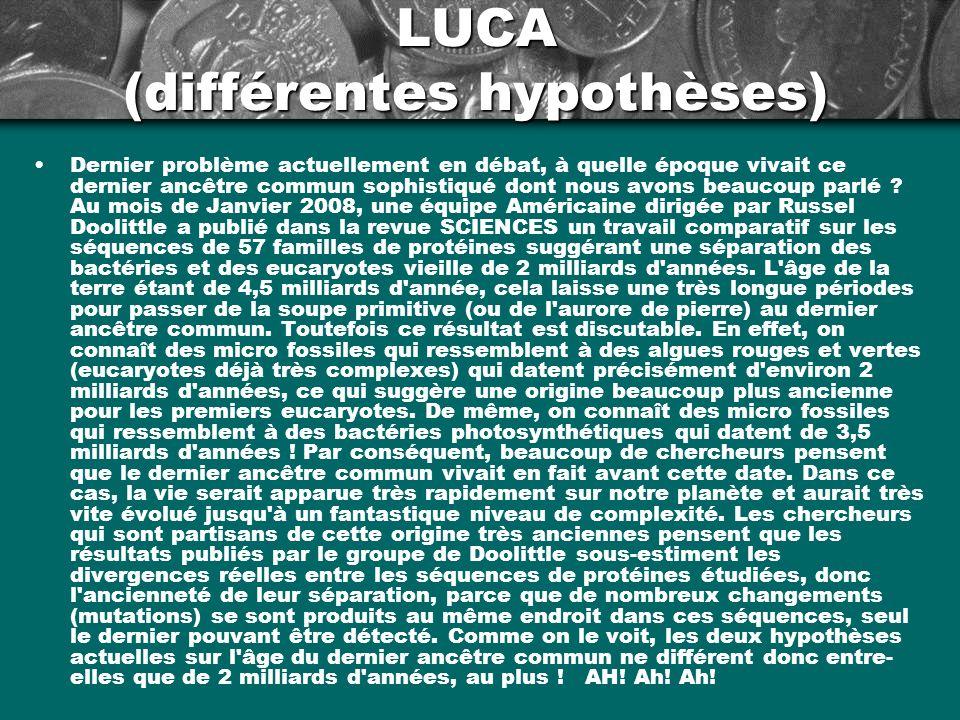 LUCA (différentes hypothèses) Dernier problème actuellement en débat, à quelle époque vivait ce dernier ancêtre commun sophistiqué dont nous avons bea