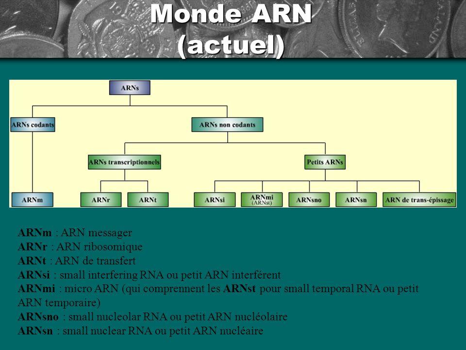Monde ARN (actuel) ARNm : ARN messager ARNr : ARN ribosomique ARNt : ARN de transfert ARNsi : small interfering RNA ou petit ARN interférent ARNmi : m