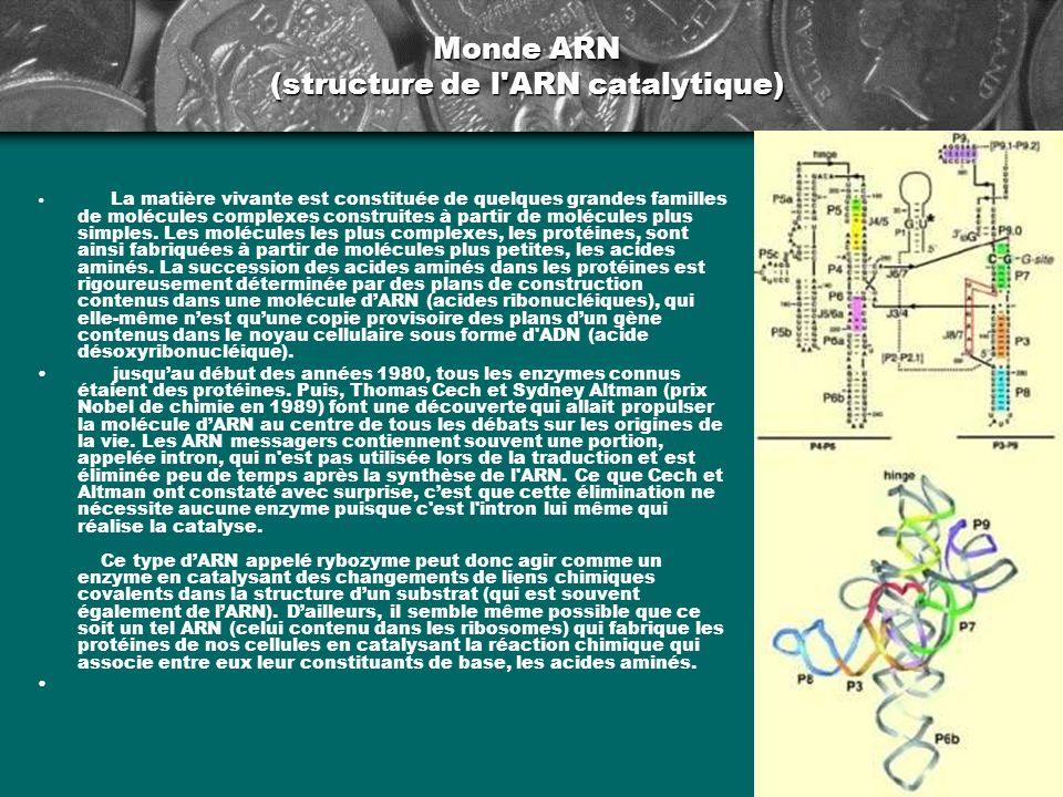 Monde ARN (structure de l'ARN catalytique) La matière vivante est constituée de quelques grandes familles de molécules complexes construites à partir