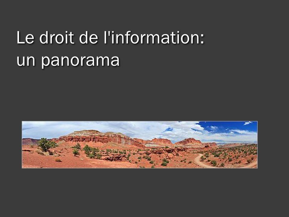 Le droit de l information: un panorama