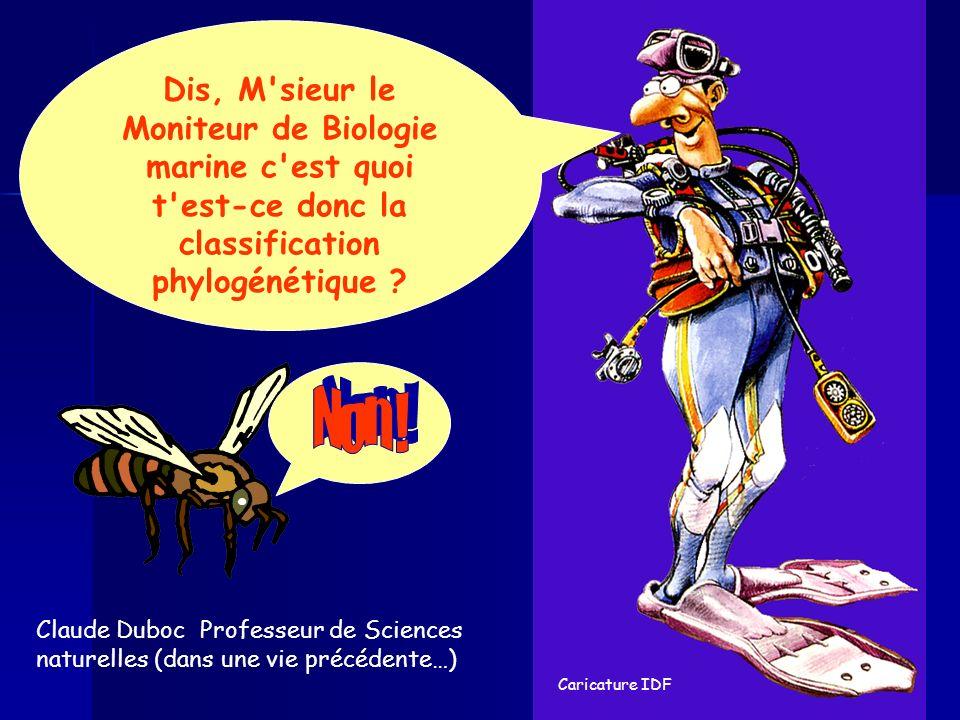 Claude Duboc Professeur de Sciences naturelles (dans une vie précédente…) Caricature IDF Dis, M'sieur le Moniteur de Biologie marine c'est quoi t'est-