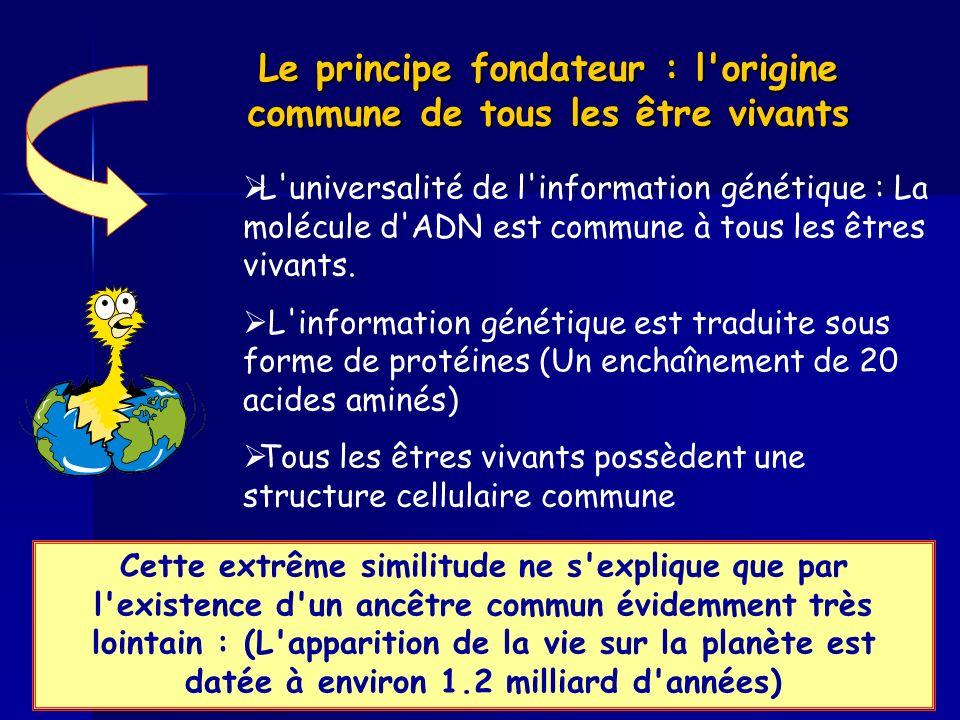 Le principe fondateur : l'origine commune de tous les être vivants L'universalité de l'information génétique : La molécule d'ADN est commune à tous le