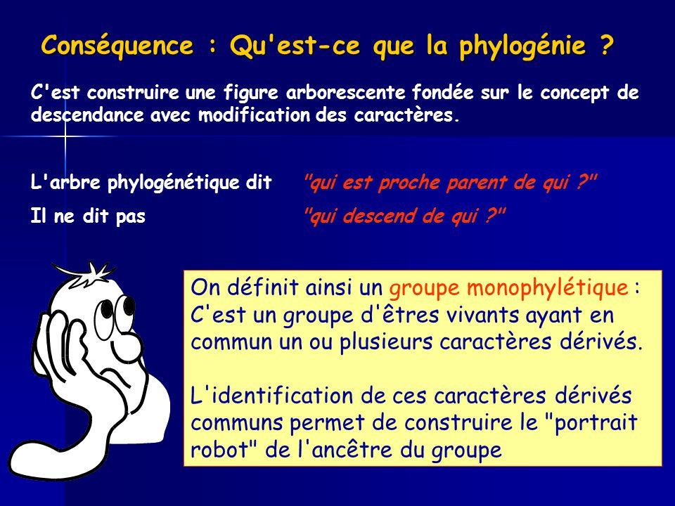 Conséquence : Qu'est-ce que la phylogénie ? C'est construire une figure arborescente fondée sur le concept de descendance avec modification des caract