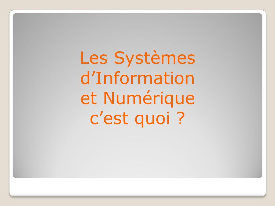 Les Systèmes dInformation et Numérique cest quoi ?